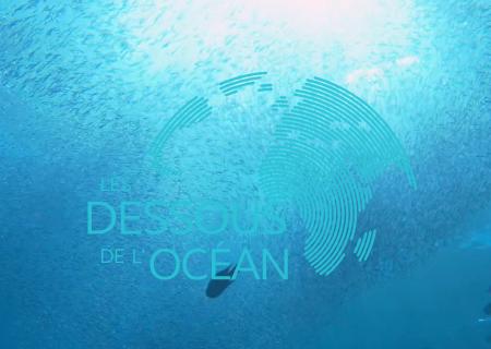 LES DESSOUS DE L'OCEAN
